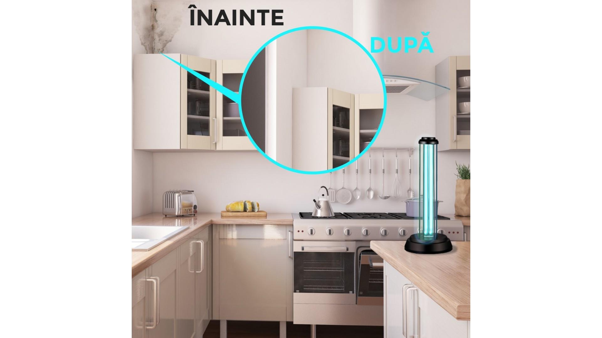 Lampa UV – Solutia rapida impotriva mucegaiului